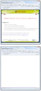 Differenza tra newsletter grafica e testuale